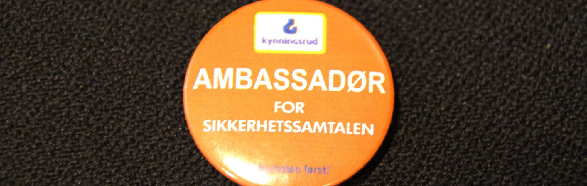 Ambassadörer för säkerheten